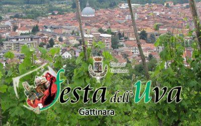 Festa dell'Uva 2017, Gattinara #seitu