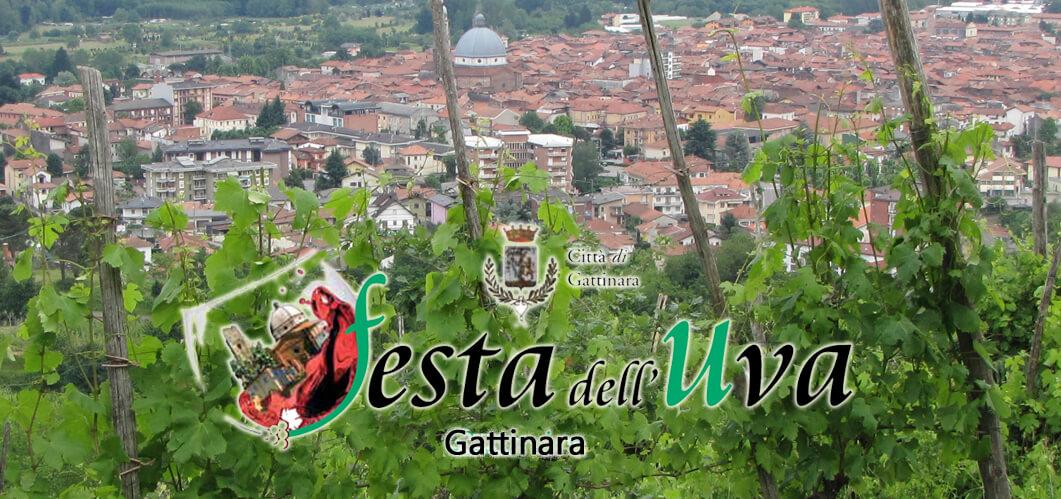 In diretta dalla Festa dell'Uva 2016: Gattinara #seitu!